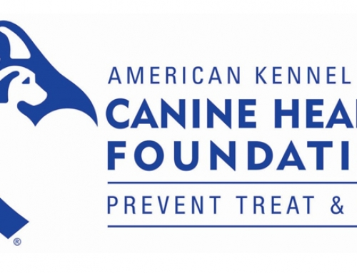 2015 Report AKC Canine Health Foundation
