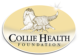 Logo for Collie Health Foundation
