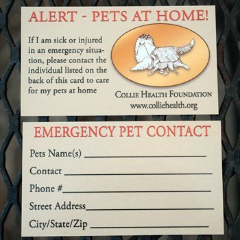 Emergency Pet Contact cards for CHF store.
