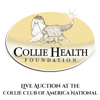 Button for store - Live auction at the Collie Club of America National
