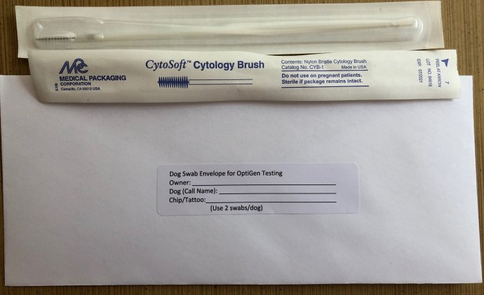 Photo of Dog Cheek Swab CytoSoft Cytology Brush.