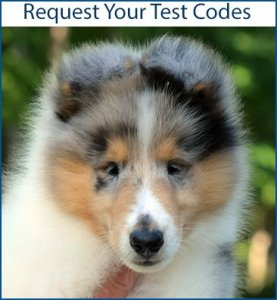 Request your test codes - clicks to contact form request.