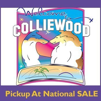 Pickup at National SALE - Deadline April 10